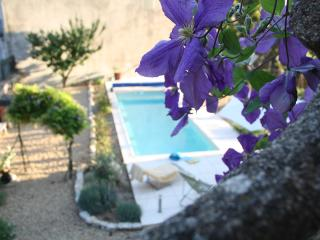 Stylish, comfortable gîte in southern France - Causses et Veyran vacation rentals