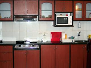Kitchen - AC two bed apt in Goa with Swimming Pool - Arpora - rentals