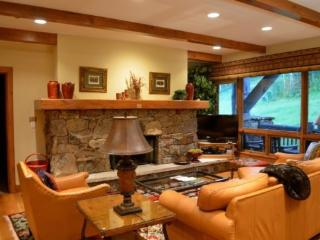 Spectacular 2BR Platinum Rated Ski In/Ski Out Condo in Exclusive Bachelor Gulch Gated Community with Ritz Carlton Access - Beaver Creek vacation rentals