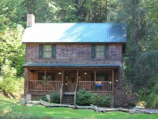 Private wooded 2BR cabin in Smokies (litt) - Pigeon Forge vacation rentals
