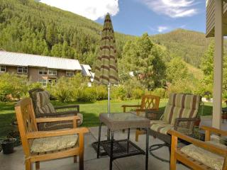 Lovely 1B Condo On River Trail. Hot Tub/Pool. - Telluride vacation rentals