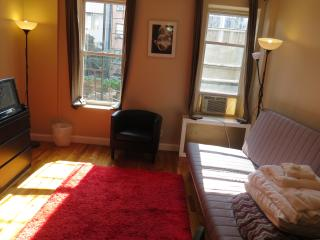 Central Park North D - New York City vacation rentals