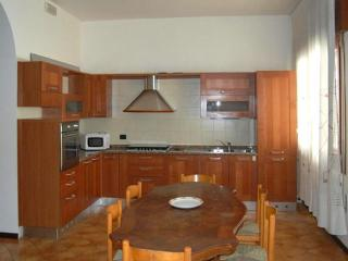 Veneto apartment 50 min from Venice - Venice vacation rentals