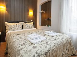 1+1 room cute flat- 1step away to İstiklal str - Istanbul vacation rentals