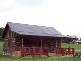 Restored log barn/cabin - Black Hills and Badlands vacation rentals