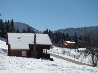 LOGHOUSE, KRIKELO, KARPENISSI, GREECE - Central Greece vacation rentals