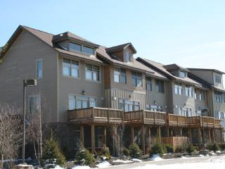 Shays Landing - 5 - Snowshoe vacation rentals