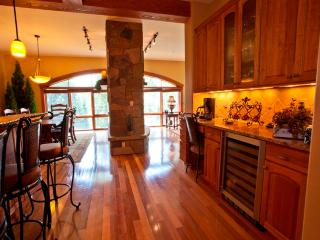Luxury Condo in Mountain Village near lift 1 and 4 - Telluride vacation rentals