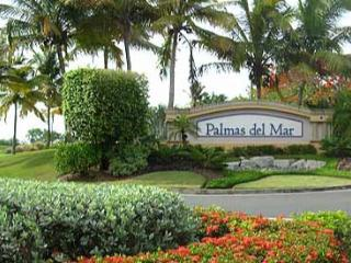Palmas Del Mar: Wonderful  Home with Private Pool - Humacao vacation rentals