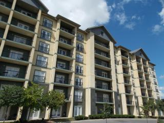 Convenient 1 BR Condo Wi Fi, in Pigeon Forge 3603 - Pigeon Forge vacation rentals