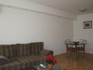 Clean & lovely 1 bedroom apt. close Radisson Hotel - Bucharest vacation rentals