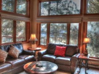 1634 quicksilver - Lakeside Village - Keystone vacation rentals
