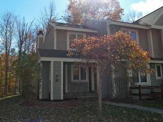 Forest Ridge 17-1 - Professionally managed by Loon Reservation Service - Lincoln vacation rentals