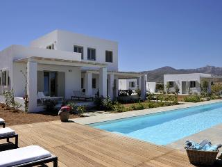 Luxury villa with private pool, next to the beach - Naoussa vacation rentals
