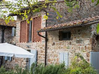 Romantic Tuscan Barn just 20 minutes from Florence - Capraia e Limite vacation rentals