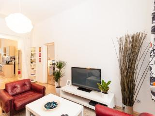 Apt 10 minutes from the downtown - Czech Republic vacation rentals