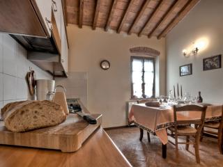 Farmhouse in the Tuscan countryside with shared swimming pool and garden - Lucca vacation rentals