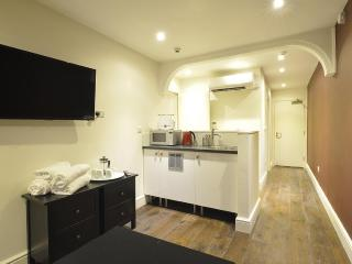 The Kensington 1 Bedroom Apartment - London vacation rentals