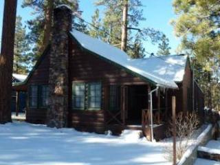 Abe's Amazing Cabin  #1421 - Big Bear Area vacation rentals