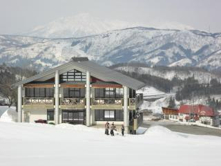 Boutique ski-in ski-out lodge in ideal location - Nozawaonsen-mura vacation rentals