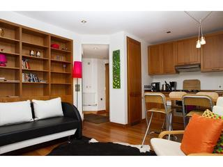 Angel Beauty! Central 1Bed1Bath GARDEN Quiet WiFi - London vacation rentals