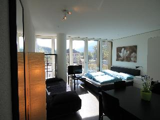 LU Verkehrshaus I-Apartment - Central Switzerland vacation rentals