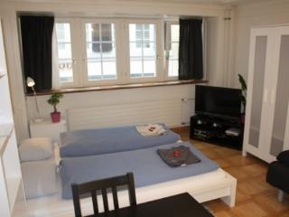 ZH Niederdorf II - Apartment - Lucerne vacation rentals