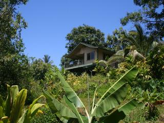 Private Jungle Cottage - Waterfalls, Natural Pools - Haiku vacation rentals