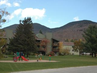 Condos include childrens summer camp in Smuggs VT - Smugglers Notch vacation rentals