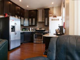 Modern Wrigleyville 2 Bedroom Close To Red Line - Illinois vacation rentals