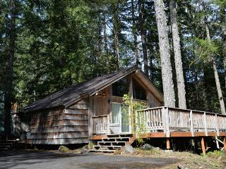 Pappy's Cabin - Brightwood vacation rentals