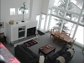 Bright & Spacious Home - Recently Remodeled (1387) - Crested Butte vacation rentals