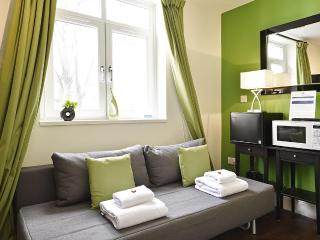 The Kensington Studio Standard Apartment - London vacation rentals