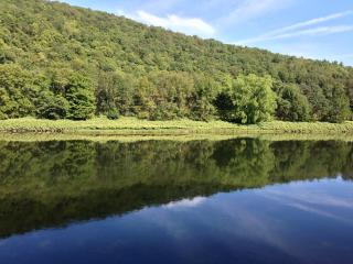 Guest House on the Delaware River - Fall Special - Callicoon vacation rentals
