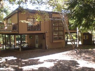 Rustic Tree Top Hideaway - Lake Harmony vacation rentals