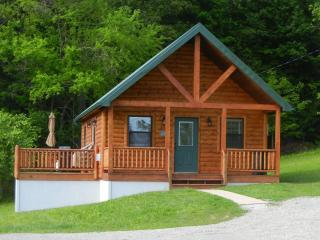 Antler Ridge Cabin in Southeastern Ohio - Chesterhill vacation rentals