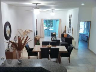 Amazing Condo Close 2 mamitas Beach And 5th Av Playa - Playa del Carmen vacation rentals