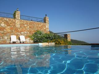 Villa (10 p.) with private pool and amazing view! - Alanya vacation rentals