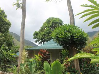 Iao Valley Private Cottage; Centrally Located! - Wailuku vacation rentals