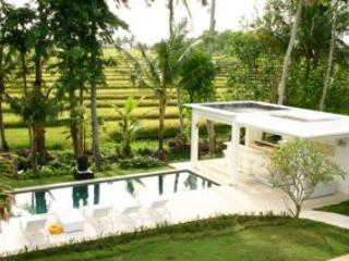 View from the 2nd Floor Balcony - Contemporary Rice Paddy Villa - Canggu - rentals