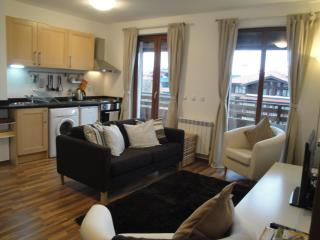 Beautiful & Cozy Ski Apartment, Bansko - Blagoevgrad vacation rentals