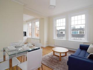 The Hammersmith 3 Bedroom 2 Bathroom Apartment - London vacation rentals