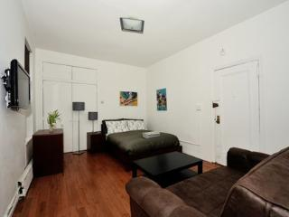 Modern Furnished Unit in Manhattan 2B ~ RA42996 - Manhattan vacation rentals