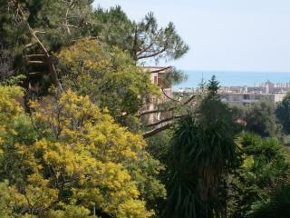 large studio with deep sea view terrace - Cagnes-sur-Mer vacation rentals