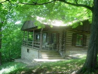 Cliffside Cabin - Front Royal vacation rentals