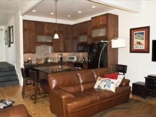 Leadville #5, Trail Creek West- Luxury Condo Close to Downtown Ketchum - Ketchum vacation rentals