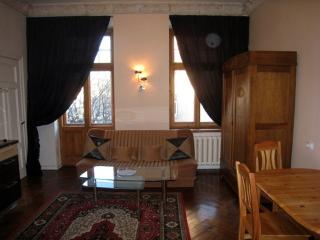 Romantic One Bedroom With Balcony in Riga Center - Riga vacation rentals