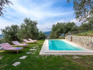 Villa with swimming-pool | Emilio - Camaiore vacation rentals