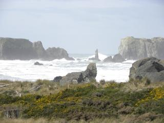 The Dunes House at Bandon - right at the ocean! - Bandon vacation rentals