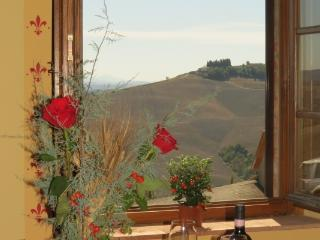 CR102Siena - Beautiful Tuscan countryside, 12 Km from Siena - Tuscany vacation rentals